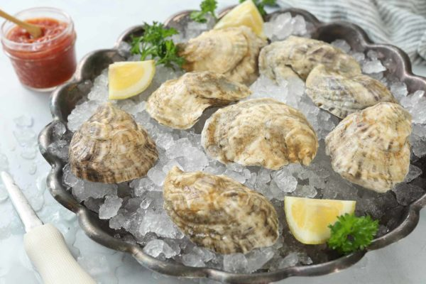 Fresh Maine Oysters