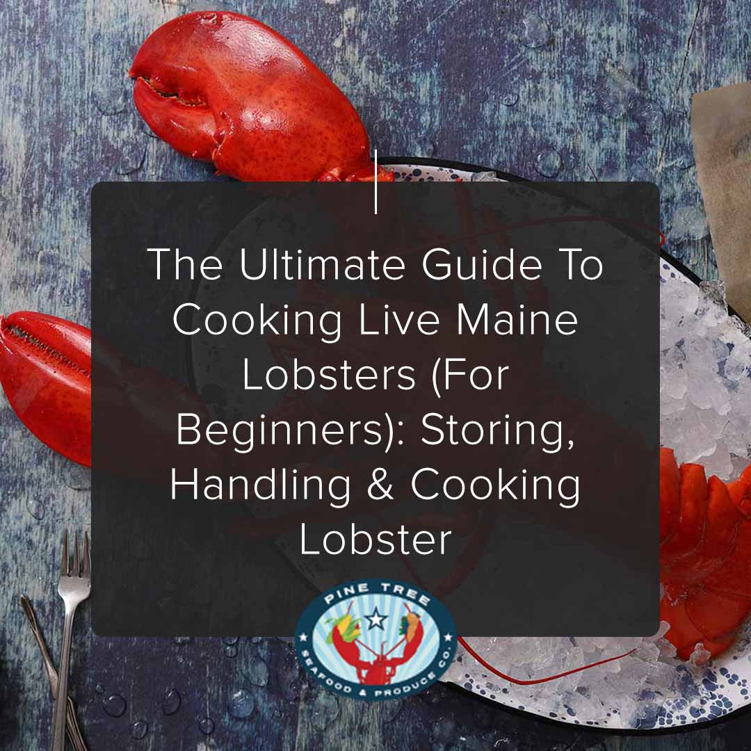 The Ultimate Guide to Cooking Live Maine Lobsters (for Beginners): Storing, Handling & Cooking Lobster