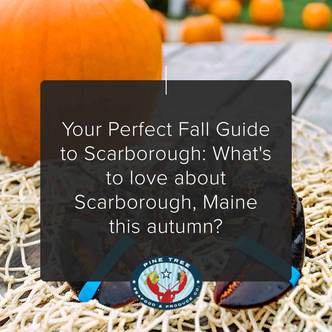 Your Perfect Fall Guide to Scarborough: What's to love about Scarborough, Maine this autumn?